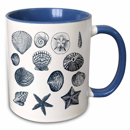 3dRose Blue Sea Shells Nautical beach theme ocean art - Two Tone Blue Mug, 11-ounce - Nautical Themed Food Ideas