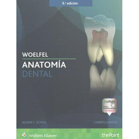 Woelfel Anatomía Dental - Walmart.com