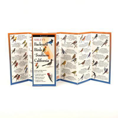 Sibley's Backyard Birds of Southern California - Walmart.com