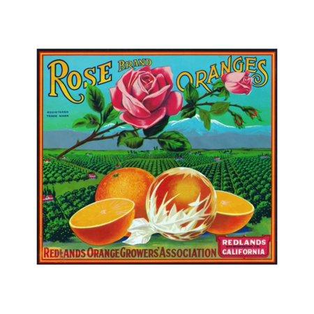 Redlands, California, Rose Brand Citrus Label Print Wall Art By Lantern -
