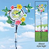 Hummingbird Outdoor Rain Gauge Thermometer by