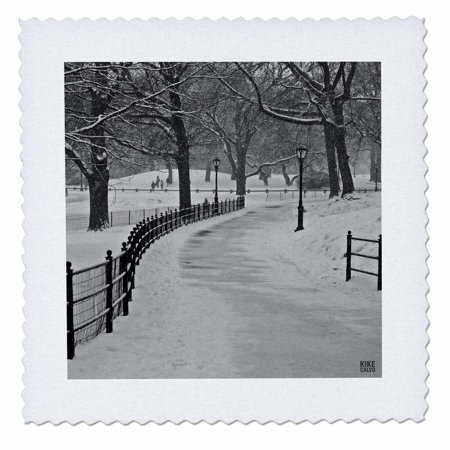 Central Park Snow (3dRose Snow blizzard in Central Park Manhattan New York City - Quilt Square, 6 by 6-inch )