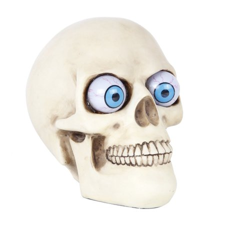 Novelty Skull with Rolling Movable Eye Ball Gothic Collectible Halloween Decor (Medium) - Halloween Novelty
