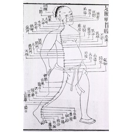Figure With Acupuncture Points And Meridian For Stomach And Foot Disorders Annotated With Chinese Characters In A 1875 Text Acupuncture Was Based On The Chinese Medical Theory That Stimulation By - 1.875 Base
