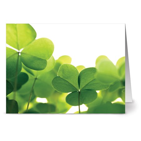 Funny St Patricks Day Card - 24 St. Patrick's Day Note Cards - Clovers - Blank Cards - Green Envelopes Included