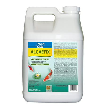 API POND Algaefix, Algae Control, 2.5 Gal