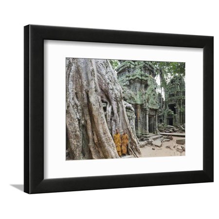 Cambodia, Siem Reap, Angkor, Ta Prohm Temple Framed Print Wall Art By Steve Vidler Ta Prohm Temple