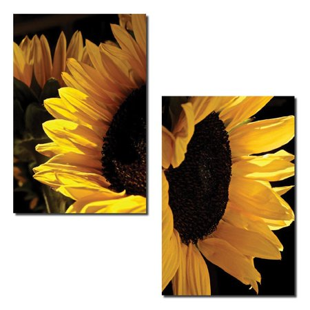 Sunlit Sunflowers | Gorgeous Blooming Yellow and Brown Sunflower Photograph Print; Two 11x14 Poster Prints