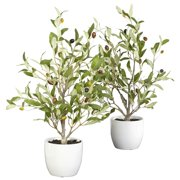 """Nearly Natural 18"""" Olive Silk Tree with Vase, Green, 2pc"""