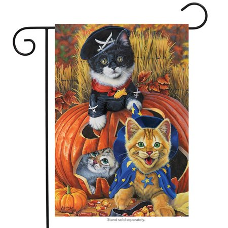 Halloween Kittens Garden Flag Pirate Jack o'Lantern Count Cats 12.5