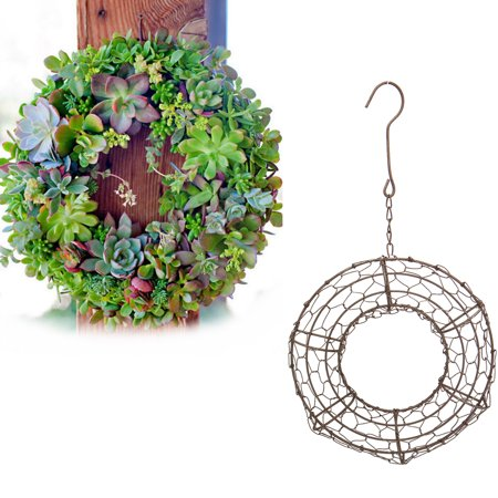 Iron Ring Plant Holder Wire Wreath Frame Succulent Pot Metal Hanging - Metal Wreath Frame