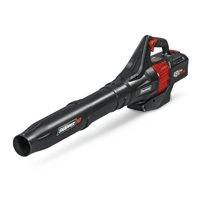 Snapper 1687968 48V Max Electric 450 CFM Leaf Blower Kit