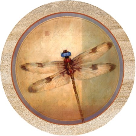Thirstystone drink coasters set dragonfly parchment - Stone absorbent coasters ...