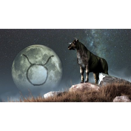 Taurus Is The Second Astrological Sign Of The Zodiac Canvas Art   Daniel Eskridgestocktrek Images  38 X 21