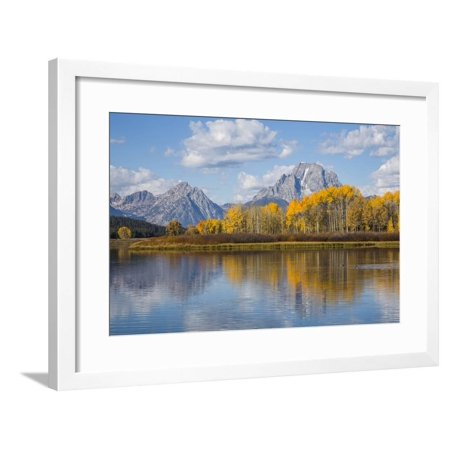 Wyoming Grand Teton National Park Autumn Color Along The