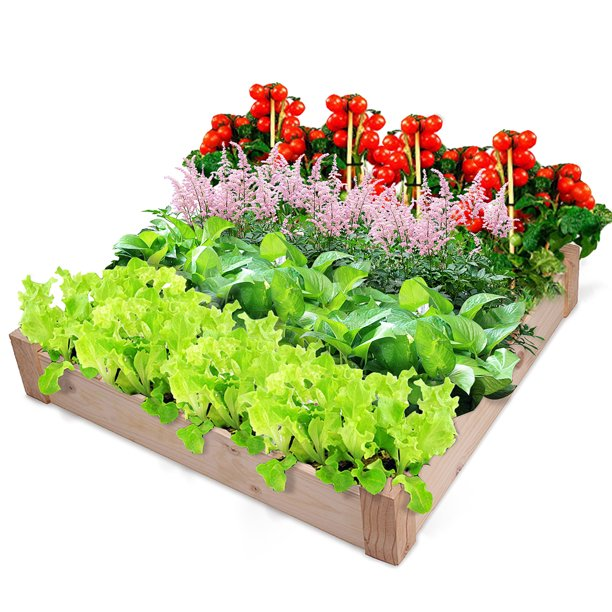 "39.3"" x 39.3"" x 5.9"" Large Square Wood Flower Planter Box Raised Patio Lawn Backyard Grow Elevated Garden Plants Bed for Fresh Vegetables, Herbs, Flowers, Succulents"