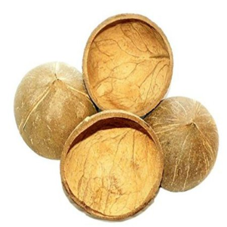 (1031 Four Half Shell Coconuts)