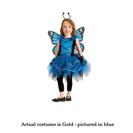 Ballerina Costume For Women (Costumes For All Occasions FW114071TS Ballerina Butterfly Toddler Small 24M-2T -)