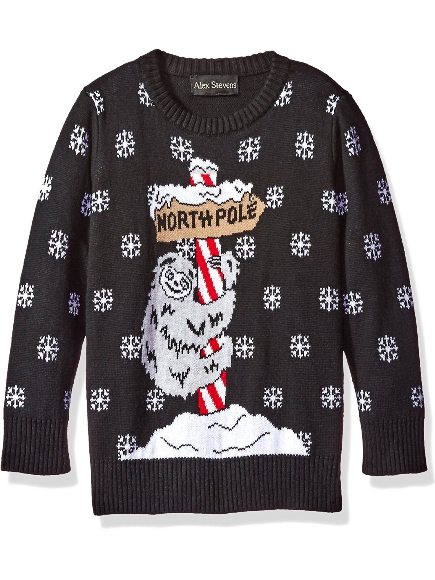 Alex Stevens Boys' Sloth Pole Sweater