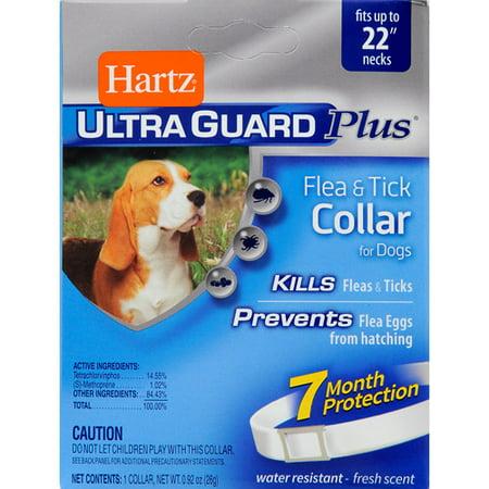 Hartz Dog Flea And Tick Collar Reviews