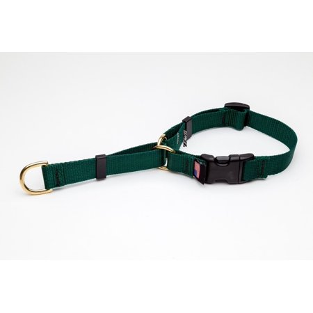 - Martingale Dog Collar High Quality Adjustable Heavy Soft Webbing Brass Hardware (Forest Green,Large 18 to 23 Inches)