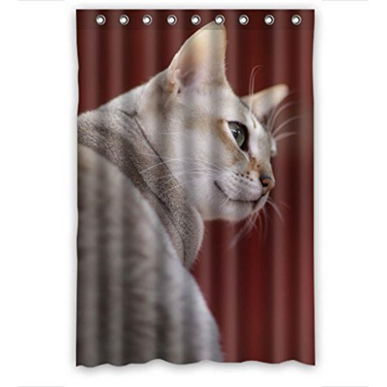 HelloDecor Playing Singapur Cats Shower Curtain Polyester Fabric Bathroom Decorative Size 48x72 Inches