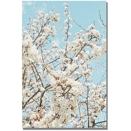"Trademark Fine Art ""Blue Cherry Blossum"" Canvas Wall Art Iby Ariane Moshayedi"