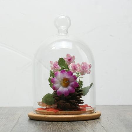 Clear Gl Display Cloche Bell Jar Dome Flower Preserve Vase