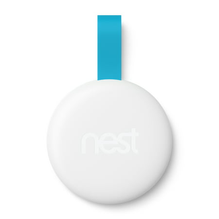 Google Nest Tag