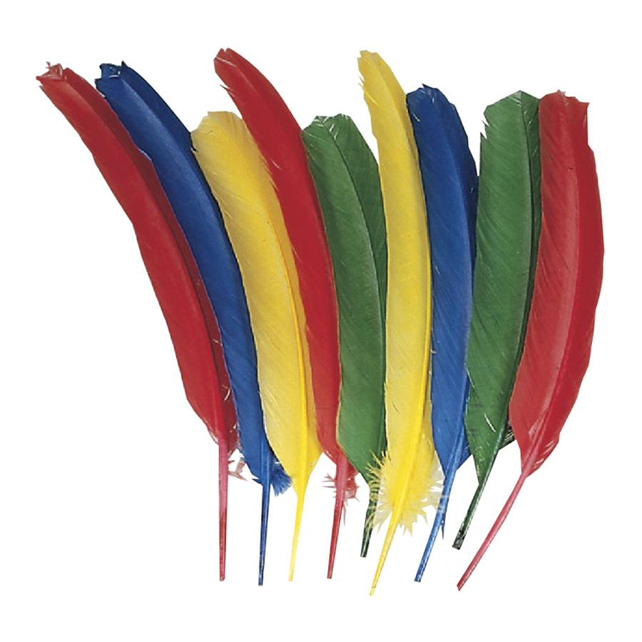 Creativity Street, CKC4503, Quill Feathers, 24 / Pack, Multicolor