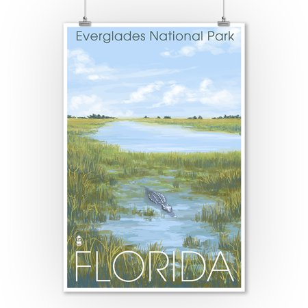Everglades Nationall Park, Florida - Alligator - Lantern Press Artwork (9x12 Art Print, Wall Decor Travel Poster) ()