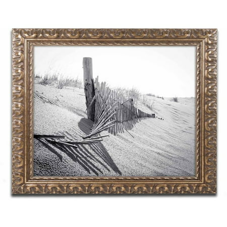 Trademark Fine Art 'High Key Dunes' Canvas Art by PIPA Fine Art, Gold Ornate - Ornate Key