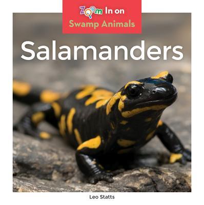 Swamp Animals: Salamanders (Hardcover)