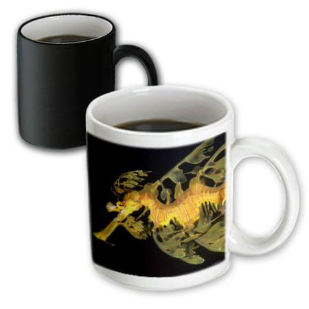 3Drose A Leafy Seadragon  Phycodurus Eques  Esperance  Western Australia  Magic Transforming Mug  11Oz