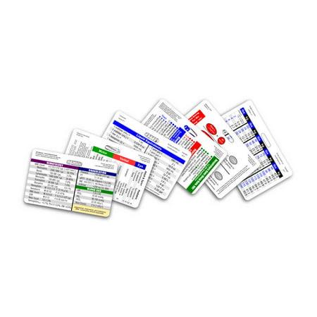 (Mini Nurse 6 Card Horizontal Badge Reference Set)