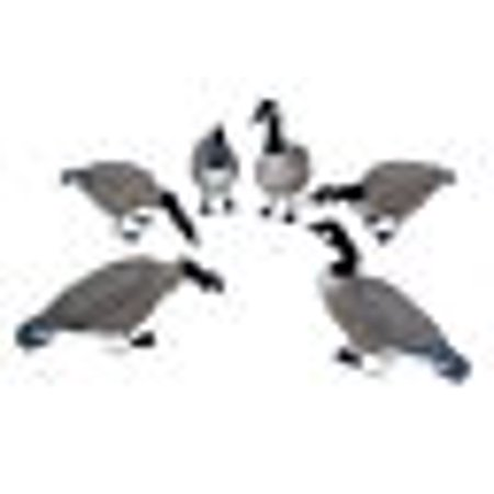 Techtongda Multiple Pose Full Body Canada Hunting Decoys Field goose 6PCS for one set