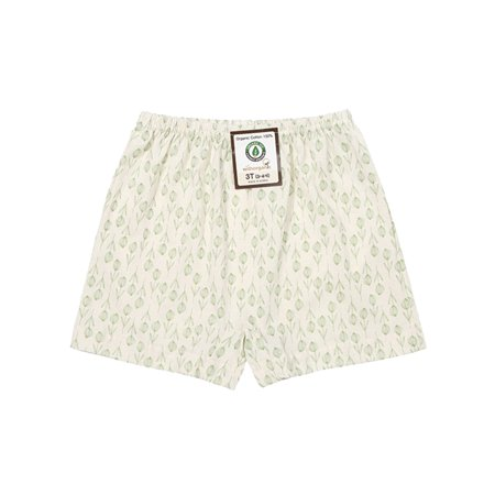 - Toddler Girls Boxer Brief PREMIUM 100% Organic Cotton 3T - 7