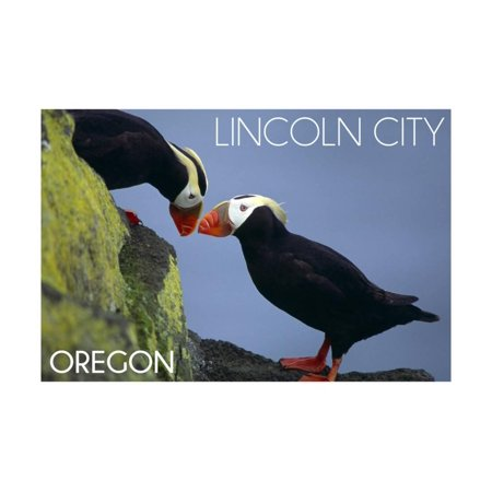 Lincoln City, Oregon - Tufted Puffins - Lantern Press Print Wall Art By Lantern (Lincoln City Oregon Mall)
