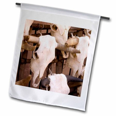 3dRose New Mexico, Santa Fe, Plaza, Cattle Skulls on Display - US32 RCA0064 - Rob Casey - Garden Flag, 12 by 18-inch