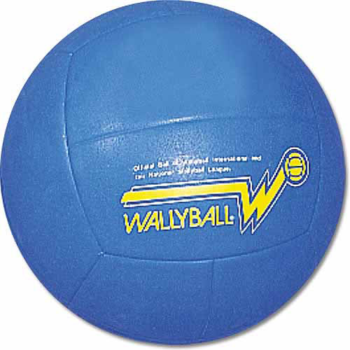 Official Wallyball Volleyball