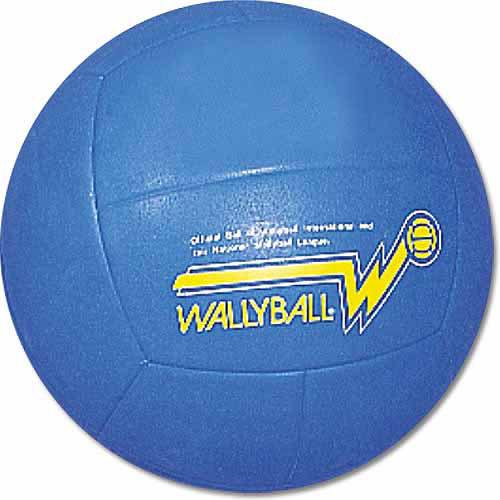 Official Wallyball Volleyball