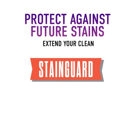 Hoover Pet Stain & Odor with Stainguard Carpet Cleaner Solution, 64Oz, AH30921
