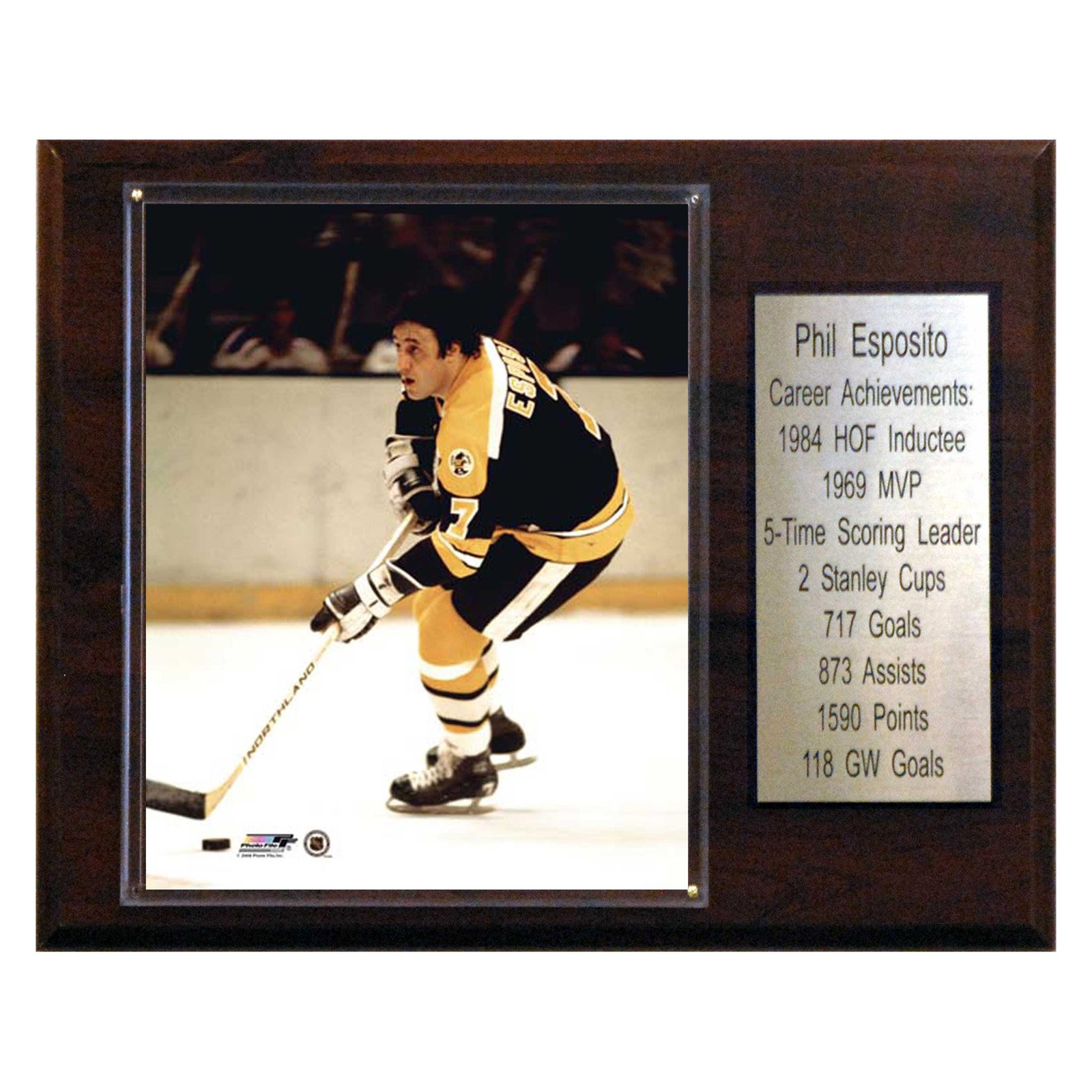 C&I Collectables NHL 12x15 Phil Esposito Boston Bruins Career Stat Plaque