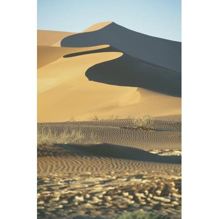 Sand Dunes In Namib Desert Canvas Art - Sasha Gusov  Design Pics (24 x (Sasha Grey Best Pics)