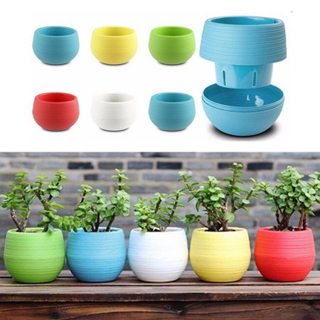 Plastic Round Drainage Plant Pots Containers for Indoor and Outdoor Herbs, Succulents, Cactus and Flowers (Fresh Herb Container Garden)