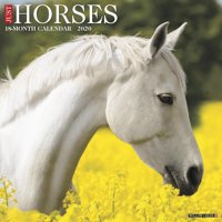 Just Horses 2020 Wall Calendar (Other)