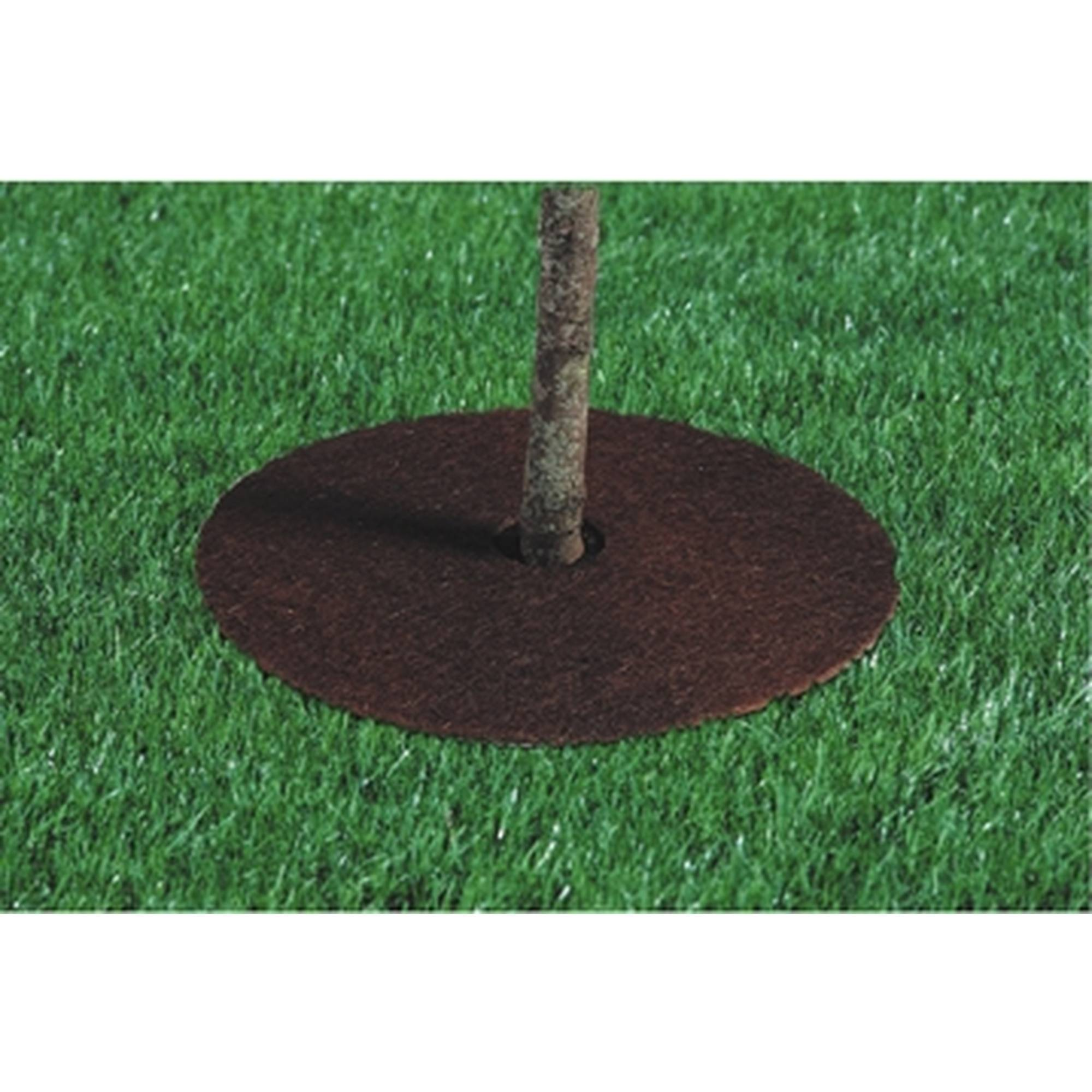 """Bosmere 18"""" Coco Fiber Tree Protector Ring, Set of 3"""