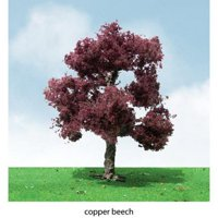 """Pro-Elite Tree, Copper Beach 3-3.5"""" (2) 92305, Exceptional quality. By JTT"""
