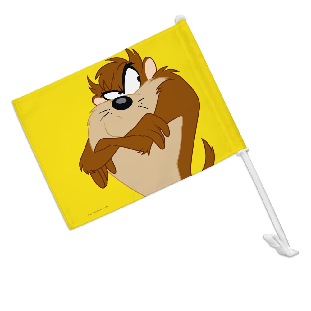 GRAPHICS /& MORE Looney Tunes Pepe Le Pew Car Truck Flag with Window Clip On Pole Holder
