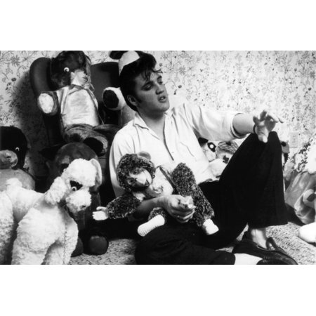 TARGET DOG ELVIS PRESLEY PLUSH BULLSEYE DOG PUPPY LAS ... |Elvis Presley Stuff Animal